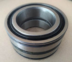 bearing nnf5010 (SL045010)